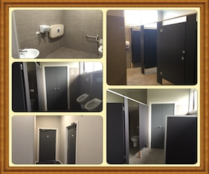 Renovated Toilets